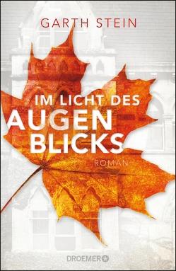 Im Licht des Augenblicks von Löcher-Lawrence,  Werner, Stein,  Garth