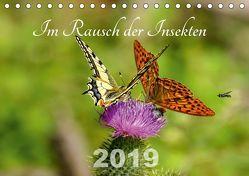 Im Rausch der Insekten (Tischkalender 2019 DIN A5 quer) von Haase,  Leona