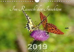 Im Rausch der Insekten (Wandkalender 2019 DIN A4 quer) von Haase,  Leona
