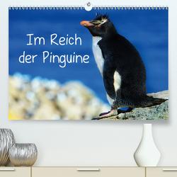Im Reich der Pinguine (Premium, hochwertiger DIN A2 Wandkalender 2020, Kunstdruck in Hochglanz) von Pfaff,  Hans-Gerhard