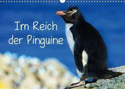 Im Reich der Pinguine (Wandkalender 2019 DIN A3 quer) von Pfaff,  Hans-Gerhard