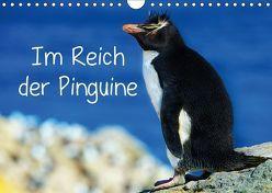 Im Reich der Pinguine (Wandkalender 2019 DIN A4 quer) von Pfaff,  Hans-Gerhard