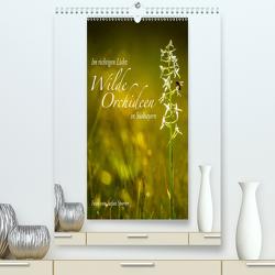 Im richtigen Licht: Wilde Orchideen in Südbayern (Premium, hochwertiger DIN A2 Wandkalender 2021, Kunstdruck in Hochglanz) von Spörrer,  Stefan