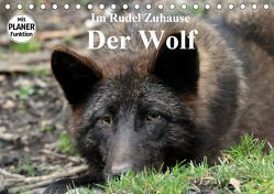 Im Rudel Zuhause – Der Wolf (Tischkalender 2020 DIN A5 quer) von Klatt,  Arno