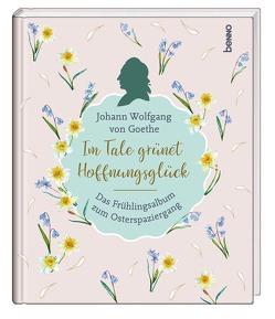 Im Tale grünet Hoffnungsglück von von Goethe,  Johann Wolfgang