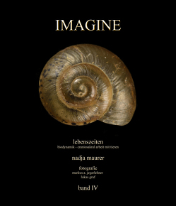 IMAGINE band 4 von Graf,  Lukas, Jegerlehner,  Markus A., Maurer,  Nadja
