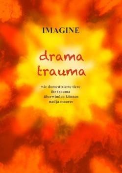 IMAGINE drama trauma von Graf,  Lukas, Maurer,  Nadja, Vischer,  Sophie