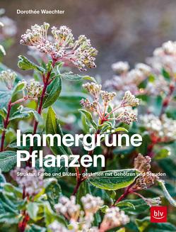 Immergrüne Pflanzen von Waechter,  Dorothée