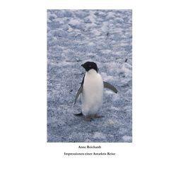Impressionen einer Antarktis Reise von Reichardt,  Anne