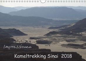 Impressionen Kameltrekking Sinai 2018 (Wandkalender 2018 DIN A4 quer) von Wesselak,  Mucki