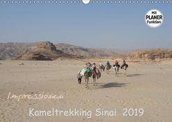 Impressionen Kameltrekking Sinai 2019 (Wandkalender 2019 DIN A3 quer) von Wesselak,  Mucki