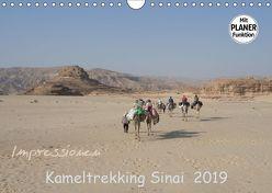 Impressionen Kameltrekking Sinai 2019 (Wandkalender 2019 DIN A4 quer) von Wesselak,  Mucki