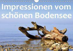 Impressionen vom schönen Bodensee (Wandkalender 2019 DIN A4 quer) von GUGIGEI