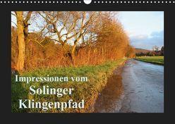 Impressionen vom Solinger Klingenpfad (Wandkalender 2019 DIN A3 quer) von Bauch,  Dorothee