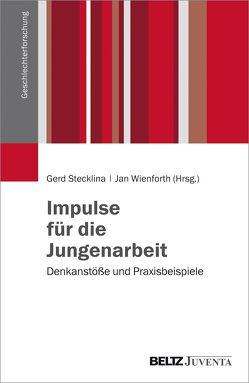 Impulse für die Jungenarbeit von Stecklina ,  Gerd, Wienforth,  Jan