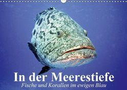 In der Meerestiefe. Fische und Korallen im ewigen Blau (Wandkalender 2018 DIN A3 quer) von Stanzer,  Elisabeth