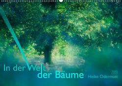 In der Welt der Bäume (Wandkalender 2019 DIN A2 quer) von Odermatt,  Heike