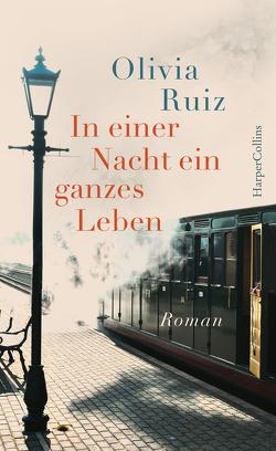 In einer Nacht ein ganzes Leben von Rodewald,  Corinna, Ruiz,  Olivia