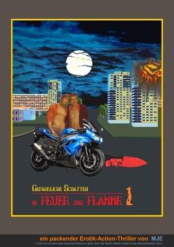 in FEUER und FLAMME / in FEUER und FLAMME (Teil 1) von Eisemann,  Mirko Jupp