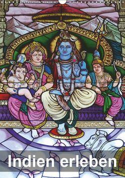 Indien erleben (Wandkalender 2019 DIN A3 hoch) von Rudolf Blank,  Dr.