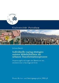 Individuelle coping strategies unterer Mittelschichten im urbanen Transformationsprozess von Ewaldt,  Juliane