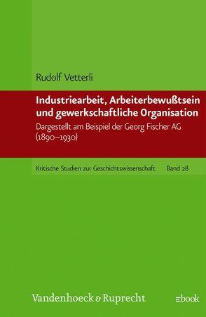 Industriearbeit, Arbeiterbewußtsein und gewerkschaftliche Organisation von Vetterli,  Rudolf