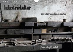 Industriekultur, Schraubenfabrik Zehner, Saalfeld (Wandkalender 2019 DIN A4 quer) von Gerlach,  DY