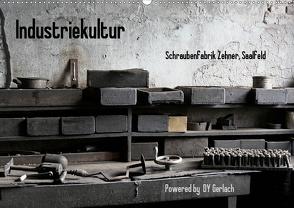 Industriekultur, Schraubenfabrik Zehner, Saalfeld (Wandkalender 2021 DIN A2 quer) von Gerlach,  DY