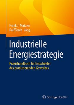 Industrielle Energiestrategie von Matzen,  Frank J., Tesch,  Ralf