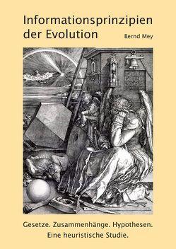 Informationsprinzipien der Evolution von Mey,  Bernd