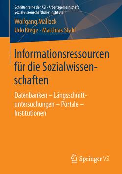 Informationsressourcen für die Sozialwissenschaften von Mallock,  Wolfgang, Riege,  Udo, Stahl,  Matthias