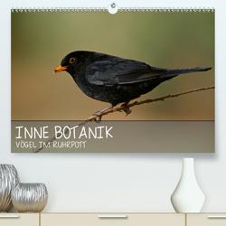 INNE BOTANIK – Vögel im Ruhrpott (Premium, hochwertiger DIN A2 Wandkalender 2021, Kunstdruck in Hochglanz) von Krebs,  Alexander