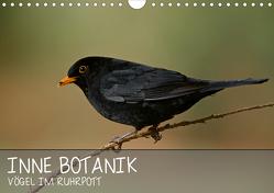INNE BOTANIK – Vögel im Ruhrpott (Wandkalender 2021 DIN A4 quer) von Krebs,  Alexander