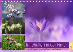 Innehalten in der Natur … mit Weisheiten und Sprichworten der Indianer (Tischkalender 2019 DIN A5 quer) von Michel,  Susan