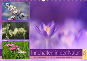 Innehalten in der Natur … mit Weisheiten und Sprichworten der Indianer (Wandkalender 2020 DIN A2 quer) von Michel,  Susan