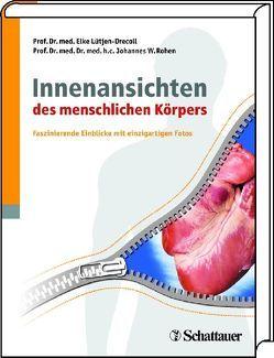 Innenansichten des menschlichen Körpers von Lütjen-Drecoll,  Elke, Rohen,  Johannes W