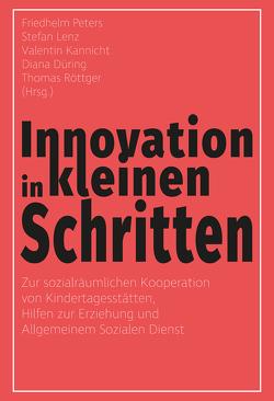 Innovation in kleinen Schritten von Düring,  Diana, Kannicht,  Valentin, Lenz,  Stefan, Peters,  Friedhelm, Röttger,  Thomas