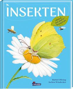 Insekten von Oftring,  Bärbel, Windecker,  Jochen