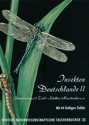 Insekten Deutschlands / Schmetterlinge von Brandt,  H