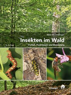 Insekten im Wald von Wermelinger,  Beat