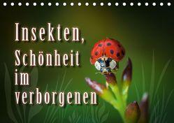 Insekten, Schönheit im verborgenen (Tischkalender 2019 DIN A5 quer) von Gödecke,  Dieter