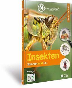 Insekten, Spinnen und Co. von Baberg,  Ilonka, Bundesamt für Naturschutz, Kanbay,  Feryal