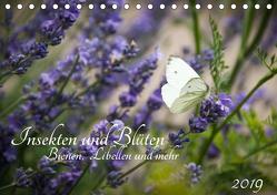 Insekten und Blüten – Bienen, Libellen und mehr (Tischkalender 2019 DIN A5 quer) von Wilms,  Barbara