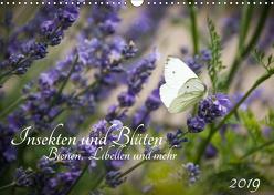Insekten und Blüten – Bienen, Libellen und mehr (Wandkalender 2019 DIN A3 quer) von Wilms,  Barbara