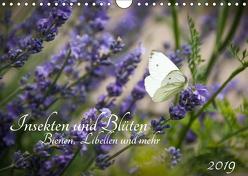 Insekten und Blüten – Bienen, Libellen und mehr (Wandkalender 2019 DIN A4 quer) von Wilms,  Barbara