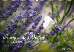Insekten und Blüten – Bienen, Libellen und mehr (Wandkalender 2020 DIN A2 quer) von Wilms,  Barbara