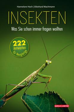 Insekten – Was Sie schon immer fragen wollten von Hoch,  Hannelore, Wachmann,  Ekkehard