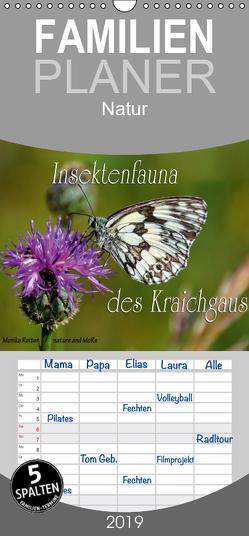 Insektenfauna des Kraichgaus – Familienplaner hoch (Wandkalender 2019 , 21 cm x 45 cm, hoch) von Reiter,  Monika