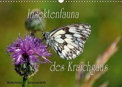 Insektenfauna des Kraichgaus (Wandkalender 2018 DIN A3 quer) von Reiter,  Monika