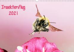 Insektenflug 2021 (Wandkalender 2021 DIN A3 quer) von Schmidt,  Jürgen